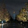 Photos: 東京タワーライトアップ