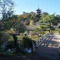 三渓園の橋2