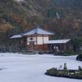 雪と紅葉の猫寺