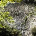 Photos: 河津の岩肌