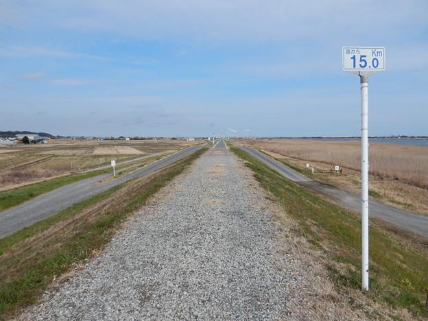 15km地点に自転車道