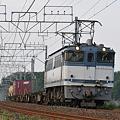 EF651093