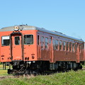 いすみ鉄道 臨時急行3号 (キハ52 125)