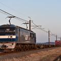 貨物列車 (EF210-135)