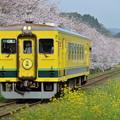 いすみ鉄道 普通列車 10D
