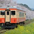 いすみ鉄道 普通列車 9D (キハ20 1303)