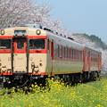 Photos: いすみ鉄道 普通列車 512D (キハ28 2346 + キハ52 125)