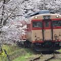 いすみ鉄道 普通列車 516D (キハ28 2346 + キハ52 125)