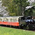 Photos: 小湊鐵道 里山トロッコ 1号