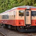 Photos: いすみ鉄道 普通列車 50D (キハ20 1303)
