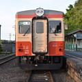 いすみ鉄道 普通列車 50D (キハ20 1303)