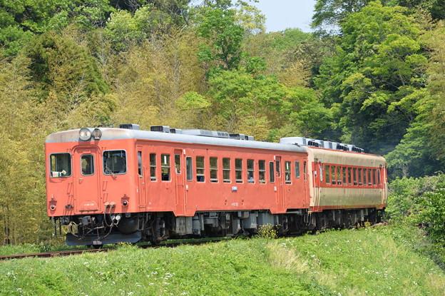 Photos: いすみ鉄道 普通列車 103D