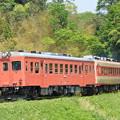 いすみ鉄道 普通列車 103D