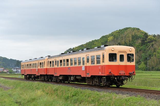 Photos: 小湊鐵道 普通列車 11A