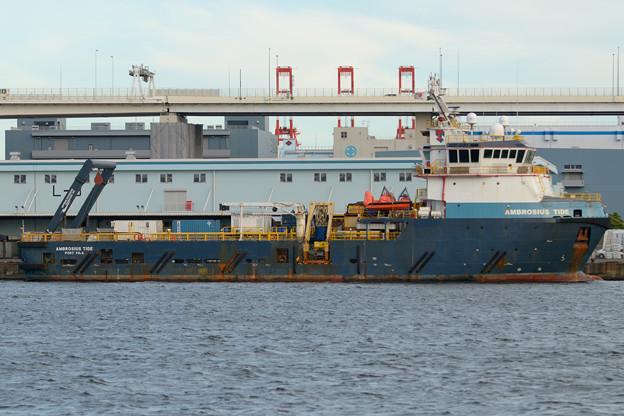 オフショア船 AMBROSIUS TIDE -1