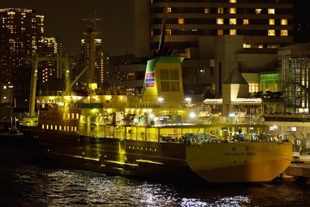 東京湾夜景航路-42