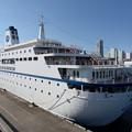 写真: World Odyssey 横浜初入港 -2