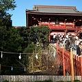 鶴岡八幡宮20101205