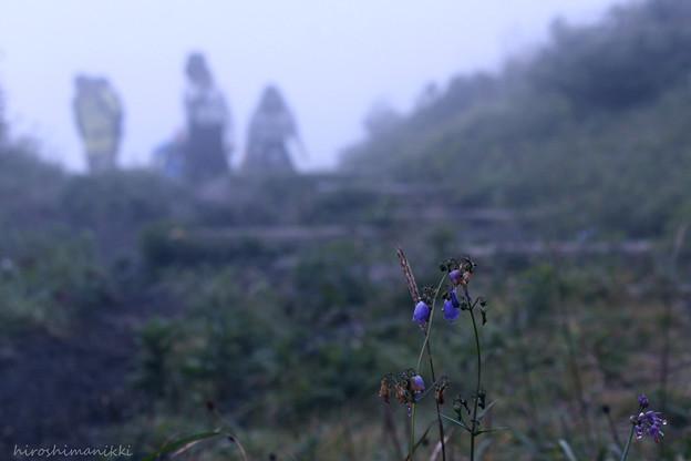Photos: 霧の山12 もう少し