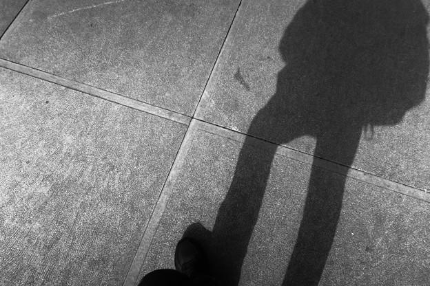 写真: 一歩