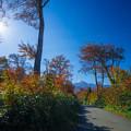 写真: 鳥海山へ!