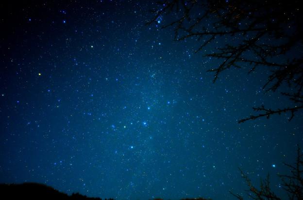 写真: カシオペア瞬く夜