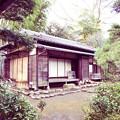 yashikirin_003