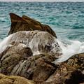 写真: sea