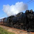 試9421レ D51 498+旧型客車 6両+DE10 1752