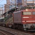写真: 5051レ EF81 717+コキ