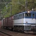 5086レ EF65 2081+コキ