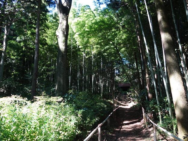雙林寺 (群馬県渋川市中郷)