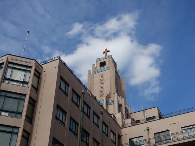 聖路加 国際大学 (中央区明石町)