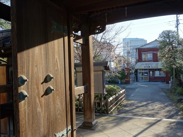 円真寺 (川崎市幸区幸町)