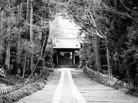 寿福寺 (神奈川県鎌倉市扇ガ谷)