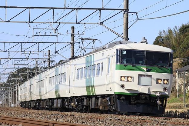 Photos: _MG_0707 成田臨 185系