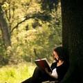 Photos: 独り読書も楽しからずや