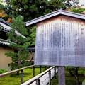 Photos: 高桐院・説明の高札