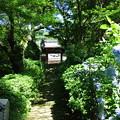 Photos: 神光寺 (1)