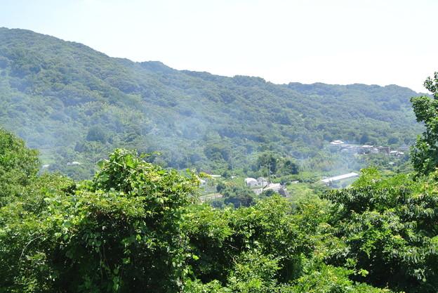 農免道路から高安山方向を望む (1)