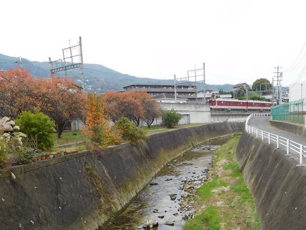 竜田川 (2)