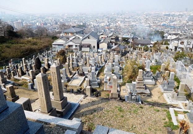 墓参 (3)