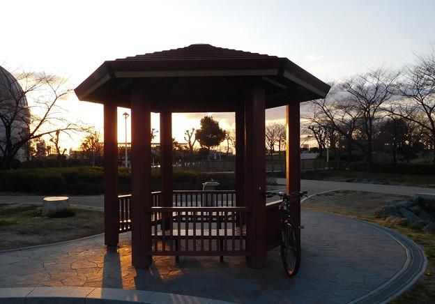 花園中央公園の夕照