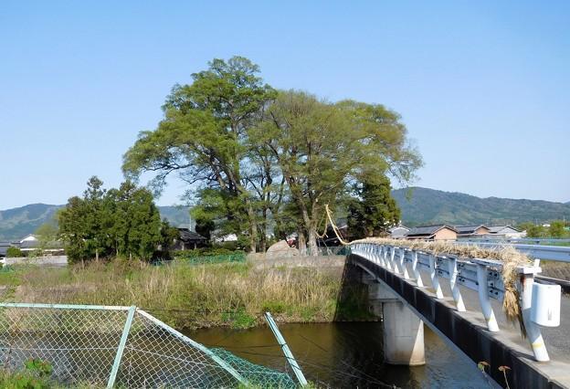 素戔嗚神社 (1)