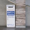 Photos: 長浜のアレ