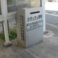 Photos: 尾上の松のアレ