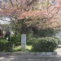 Photos: 高砂