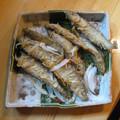 Photos: 公魚