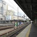 Photos: 津
