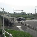 Photos: 栗熊
